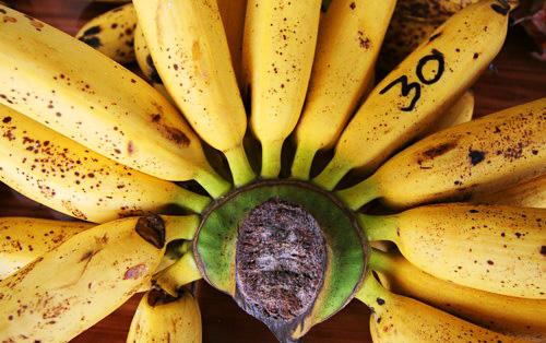 banana_1_
