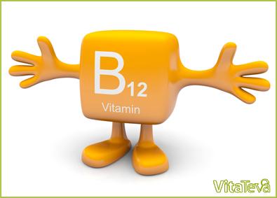 B12 (1)