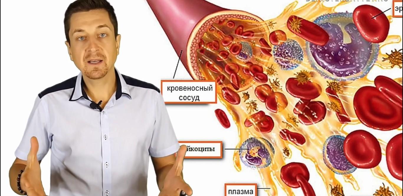 Витамин Б12 (B12)